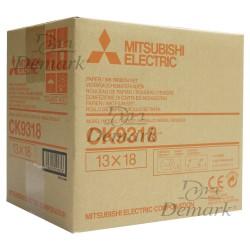 Papel Misubishi CK-9318